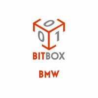 Модуль BMW Exx Bosch CAN